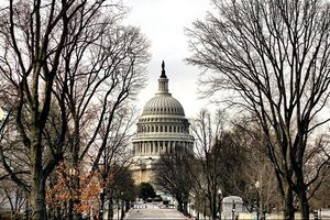 Luận tội Tổng thống Mỹ: Hạ viện công bố thêm nhiều lời chứng