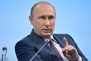 Donbass tiến triển tốt đẹp, ông Putin cân nhắc gặp Zelensky
