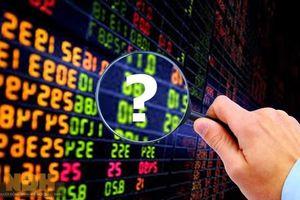 Hai nhà đầu tư bị phạt hành chính gần 200 triệu đồng