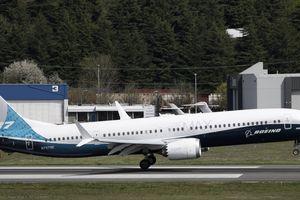 Boeing chứng kiến đơn hàng giảm mạnh do khách hàng lo ngại vụ 737 MAX