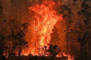 Cháy rừng Australia tạm thời được kiểm soát