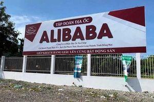 'Phát hiện cán bộ bao che vụ Alibaba phải xử lý nghiêm'
