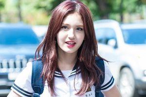 Sĩ tử Hàn Quốc bước vào kỳ thi đại học căng thẳng