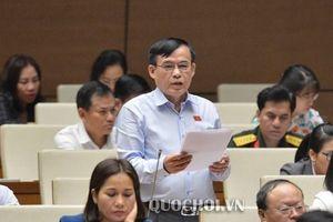 Không tổ chức HĐND cấp phường tại Hà Nội là đề án thí điểm, không vi hiến