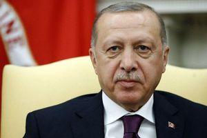 Gặp ông Trump, Tổng thống Thổ Nhĩ Kỳ đánh giá bình luận của người đồng cấp Pháp về NATO