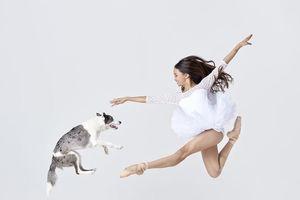 Dàn vũ công ba lê bay bổng tuyệt đẹp cùng những chú chó