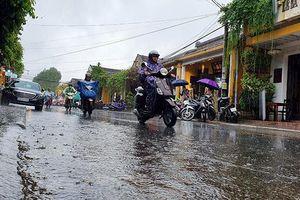 Hội An mở thêm phố đi bộ Phan Châu Trinh