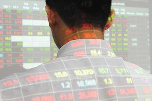 Dính lùm xùm làm giá cổ phiếu, Tập đoàn MBG có những động thái mới