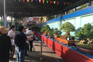 Khai mạc Lễ hội Bonsai – Suiseki Châu Á - Thái Bình Dương tại Khu du lịch Suối Tiên