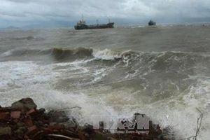 Bão Kalmaegi sẽ đi vào phía Bắc Biển Đông