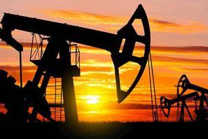 Giá dầu thô tăng nhờ kỳ vọng OPEC+ tiếp tục cắt giảm sản lượng khai thác