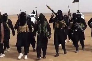Thổ Nhĩ Kỳ bắt đầu 'gửi trả' khủng bố IS về Mỹ, châu Âu