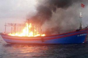 Kịp thời cứu sống 7 thuyền viên trên tàu cá bốc cháy giữa biển