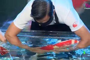 Bất ngờ màn trình diễn hơn 8 tỷ đồng của 'vua cá koi' ở 'Siêu trí tuệ Việt Nam'