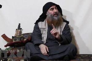 Thổ Nhĩ Kỳ bắt giữ 25 người họ hàng của thủ lĩnh IS al-Baghdadi