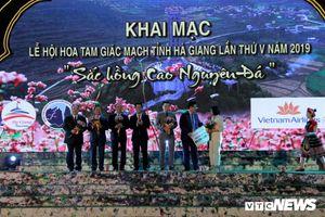 Hàng vạn người dự lễ hội Hoa tam giác mạch ở Hà Giang