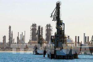 Thời khắc chạm 'đỉnh' của dầu mỏ thế giới đang đến gần