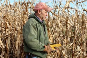 Ông Trump tuyên bố trợ cấp tiền cho nông dân trước Lễ Tạ ơn
