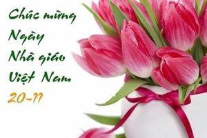 Bộ trưởng Trần Tuấn Anh gửi thư chúc mừng Ngày Nhà giáo Việt Nam 20/11