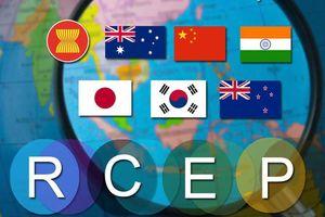 Việt Nam sẽ làm hết sức để RCEP được ký kết trong năm 2020