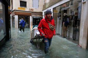 Bất ngờ với tổn thất lên tới 1,1 tỷ USD do triều cường ở Venice