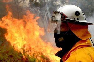 Australia: Khói mù độc hại từ các đám cháy rừng bao phủ Sydney