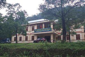 Quảng Trị: Lãnh đạo Hạt Kiểm lâm Khu bảo tồn thiên nhiên Đakrông bị kỷ luật
