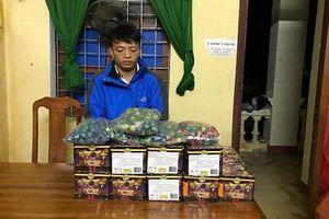 Quảng Bình: Liên tiếp bắt giữ 2 vụ vận chuyển pháo trái phép