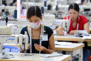 ILO hoan nghênh Việt Nam thông qua Bộ Luật Lao động sửa đổi