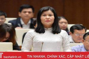 ĐBQH Hà Tĩnh đề nghị cân nhắc xây dựng nghị định riêng về hộ kinh doanh