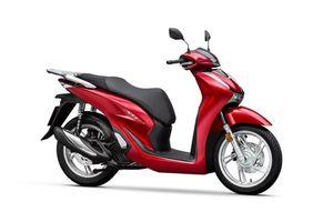XE HOT (20/11): Cận cảnh Honda SH 125i 2020, loạt ôtô Honda giảm giá mạnh tại VN