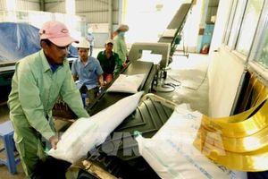 Việt Nam có gạo ngon nhất thế giới và việc xây dựng thương hiệu cho gạo Việt
