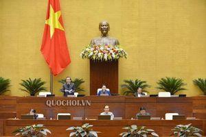 TS. Vũ Tiến Lộc - Chủ tịch VCCI: Quyền của hộ kinh doanh phải được ghi trong luật