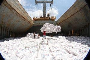 Philippines và Bờ Biển Ngà là thị trường lớn nhất của gạo Việt Nam