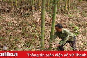 Huyện Quan Hóa thực hiện công tác xóa đói, giảm nghèo gắn với xây dựng nông thôn mới