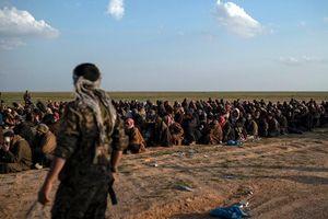 Lơ là canh gác tù binh IS ở Syria, khủng bố sẽ thừa cơ trỗi dậy?