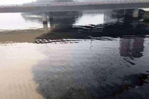 Đà Nẵng: Tìm nguyên nhân khiến nước sông Hàn đen ngòm
