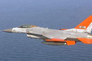 Mỹ 'biến' chiến đấu cơ F-16 thành... bia tập bắn