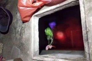 Thái Bình: Con rể đâm chết mẹ vợ rồi phi tang xác trong bể nước