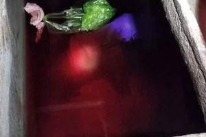 Ngáo đá sát hại mẹ vợ rồi phi tang xuống bể nước