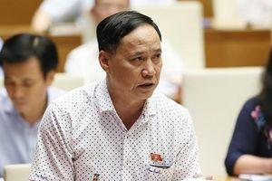 'Có lãnh đạo Bộ gây sức ép với đại biểu vì phát biểu trái quan điểm'