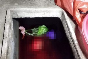 Bắt con rể sát hại mẹ vợ rồi vứt xác vào bể nước phi tang ở Thái Bình