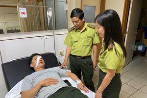 Một cán bộ bảo vệ rừng ở Thừa Thiên-Huế bị hành hung tại cơ quan