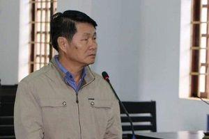 Nguyên Phó Chủ tịch huyện lãnh án tù vì 'xẻo thịt' đất rừng
