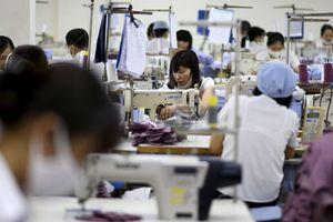 IHS Markit: Hàng Việt đang dần thay thế hàng Trung Quốc trên thị trường Mỹ
