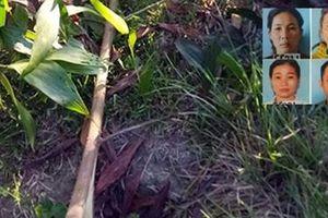 Chặt phá gần 900 cây keo vì thù tức