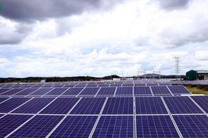 Phát triển nguồn điện mặt trời vẫn còn nhiều bất cập, hạn chế