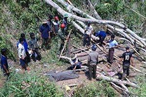 Vào rừng chặt gỗ, nam thanh niên bị cây ngã đè lên người tử vong
