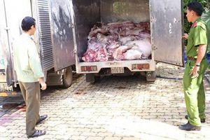 Kiểm soát chặt việc vận chuyển lợn, sản phẩm từ lợn qua biên giới