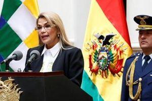 Tổng thống Bolivia đồng ý rút quân đội khỏi khu vực biểu tình